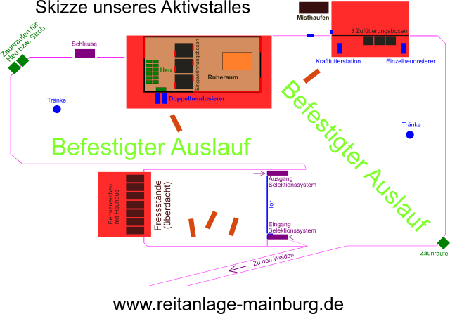 Aktivstall in Mainburg