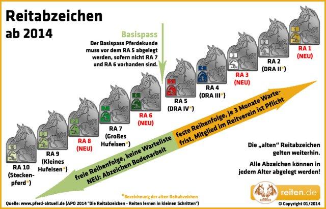 Die Reihenfolge der Deutschen Reitabzeichen